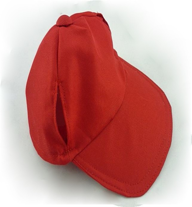 Teddy Bear Red Cap
